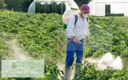 L'endometriosi è collegata a due pesticidi usati in agricoltura